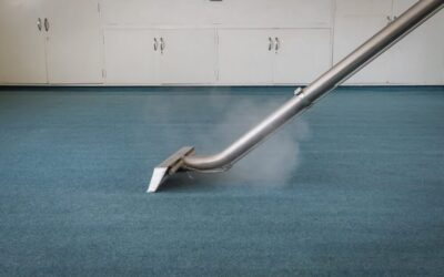 Benefits of Carpet Steam Cleaning