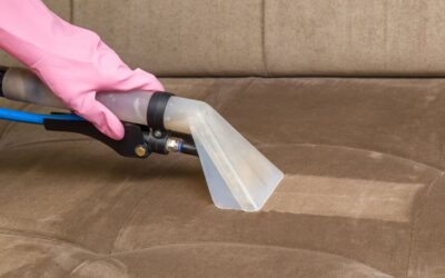 Why You Need Upholstery Cleaning In Perth