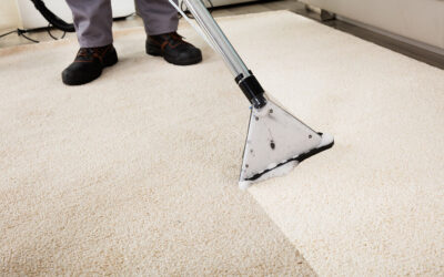 Is It Worth Getting Carpets Professionally Cleaned?